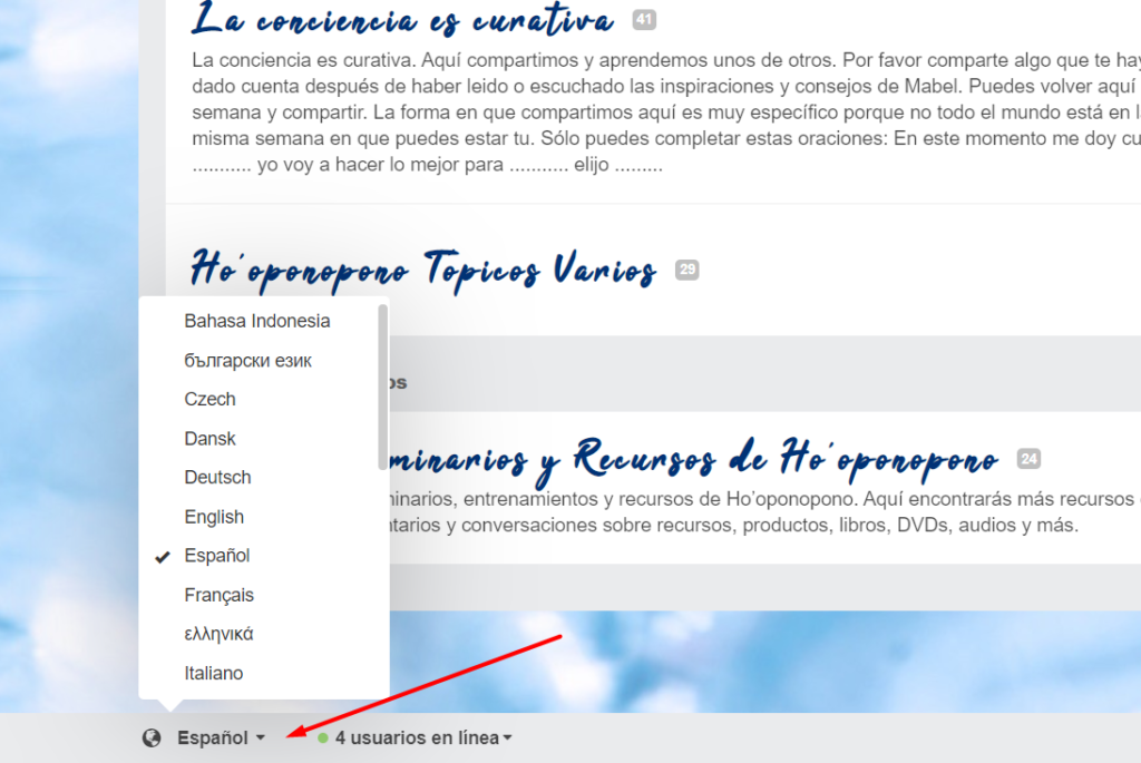 ayuda-tutorial-ayuda-del-foro-mabel-katz-espanol-idioma
