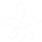 flor de lis blanca hooponopono mabel katz